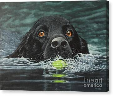 You Fetch It Next Time Canvas Print by Sid Ball