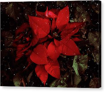 You Know It's Christmas Time When... Canvas Print