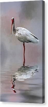You Lookin' At Me? Canvas Print by Cyndy Doty