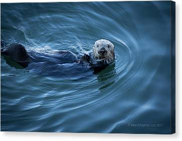 Canvas Print featuring the photograph You Otter Take My Picture, Lady by Lora Lee Chapman