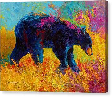 Young And Restless - Black Bear Canvas Print by Marion Rose