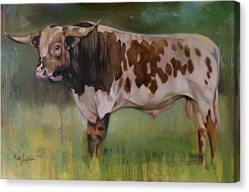 Young Bull Canvas Print by Mary Leslie