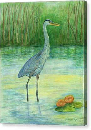 Canvas Print featuring the painting Young Great Blue Heron by Jeanne Kay Juhos
