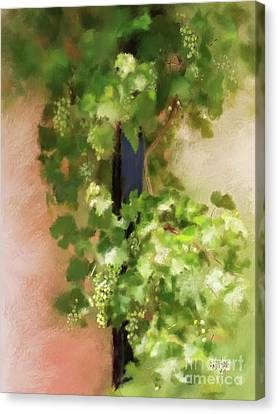 Canvas Print featuring the digital art Young Greek Wine by Lois Bryan