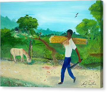 Young Man Carrying Sugarcane Canvas Print by Nicole Jean-Louis