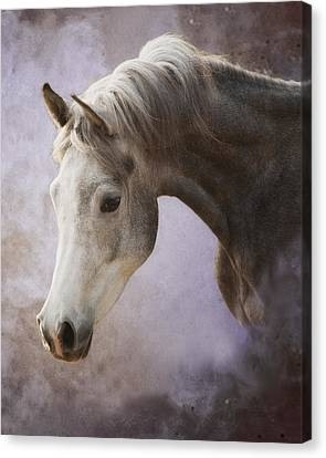 Young Prince Canvas Print by Ron  McGinnis