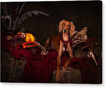 Canvas Print - Young Saluki Dog With Fruits by Tanya Kozlovsky
