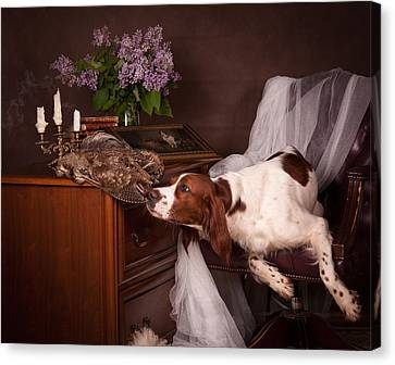 Canvas Print - Young Setter With Lilac... by Tanya Kozlovsky