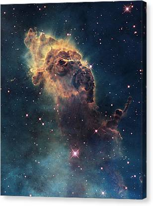 Young Stars Flare In The Carina Nebula Canvas Print by Nasa/Esa