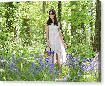 Young Woman In Bluebell Woodland Canvas Print by Amanda Elwell
