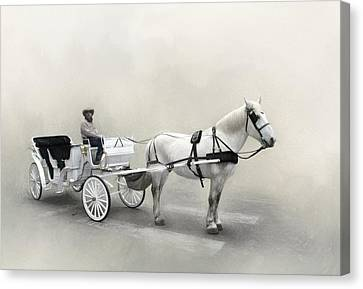 Your Carriage Awaits Canvas Print by David and Carol Kelly