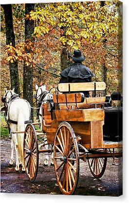 Your Carriage Awaits Canvas Print by TnBackroadsPhotos