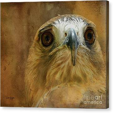 Your Majesty Canvas Print by Lois Bryan
