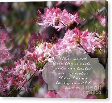 Sweet Words - Verse Canvas Print by Anita Faye