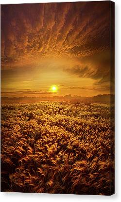 Your Whisper Tells A Secret Canvas Print by Phil Koch