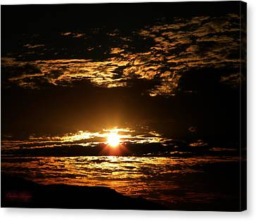 Yucca Valley Desert Sunrise Canvas Print by Carlos Reyes