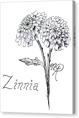 Zannie Zinnia Canvas Print