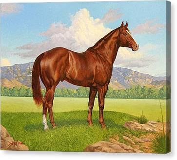 Zantanon Canvas Print