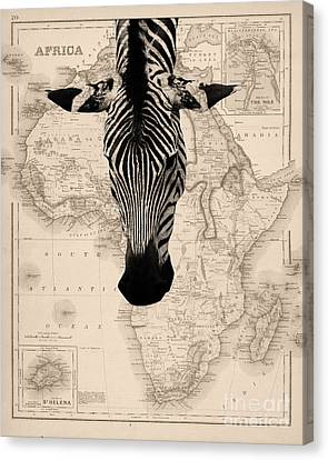 Zebra And Africa Map Canvas Print by Delphimages Photo Creations