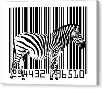 Zebra Barcode Canvas Print by Michael Tompsett