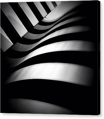 Igersoftheday Canvas Print - Zebra City - Concrete Jungle by Robbert Ter Weijden