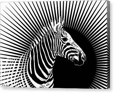Canvas Print - Zebra Dawn by Michael Durst