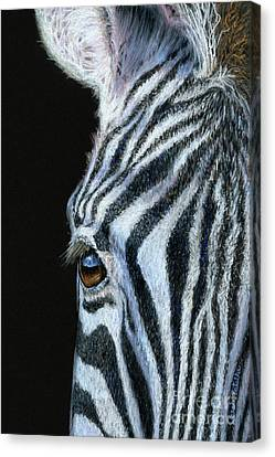 Four Animal Faces Canvas Print - Zebra Detail by Sarah Batalka