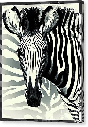 Zebra Canvas Print by Mindy Sommers