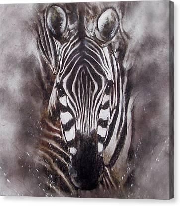 Zebra Splash Canvas Print by Jackie Flaten