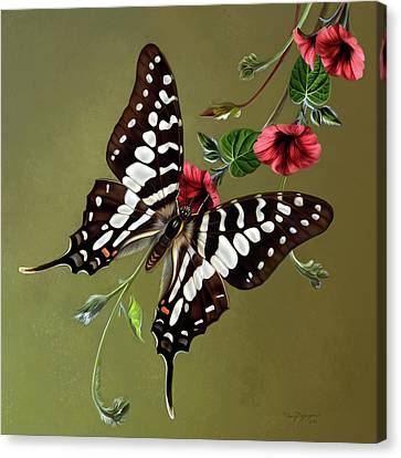 Zebra Swallowtail Butterfly Canvas Print by Thanh Thuy Nguyen