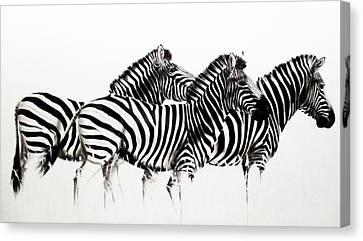 Zebras - Black And White Canvas Print
