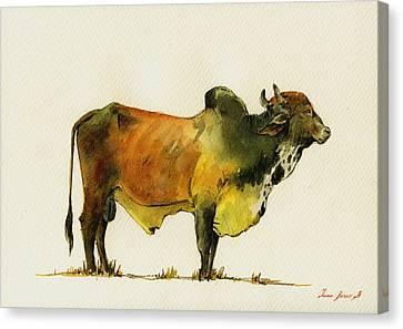 Zebu Cattle Art Painting Canvas Print by Juan  Bosco