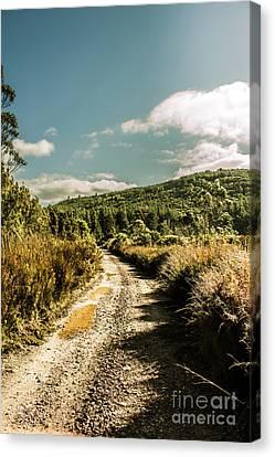 Zeehan Dirt Road Landscape Canvas Print