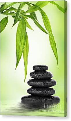 Foliage Canvas Print - Zen Basalt Stones And Bamboo by Pics For Merch