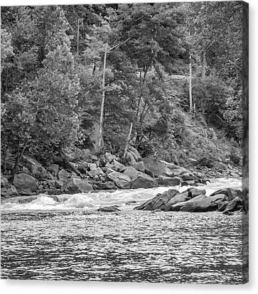 Zen Fishing - Bw Canvas Print