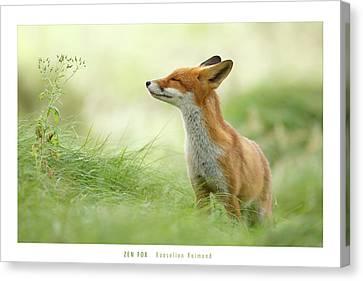 Zen Fox Roeselien Raimond Canvas Print by Roeselien Raimond