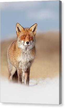 Wildlife Celebration Canvas Print - Zen Fox Series- Smiling Fox In The Snow by Roeselien Raimond