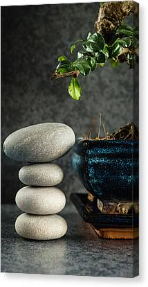 Zen Stones And Bonsai Tree Canvas Print by Marco Oliveira