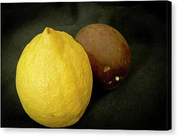 Zesty Group Is Banana And Passion Fruit. Canvas Print by Elena Perelman
