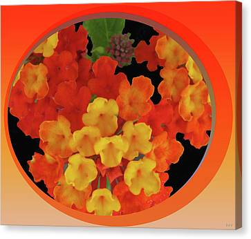 Flowerrs Canvas Print - Zesty Orange Spice by Debra     Vatalaro