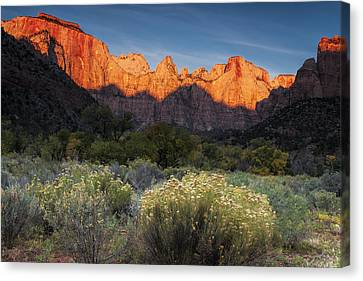 Zion At Dawn Canvas Print by Andrew Soundarajan