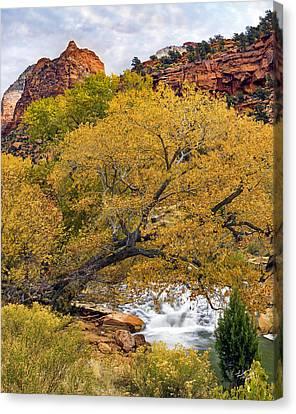 Zion Canyon Autumn Canvas Print by Leland D Howard