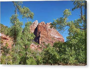 Canvas Print featuring the photograph Zion Contrasts by John M Bailey