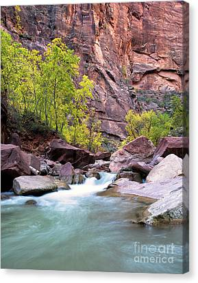 Zion In The Fall Utah Adventure Landscape Art By Kaylyn Franks Canvas Print by Kaylyn Franks