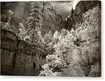 Zion Canvas Print by Mike Irwin