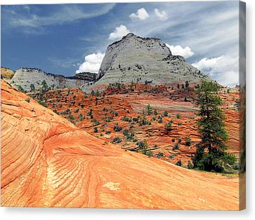 Zion National Park As A Storm Rolls In Canvas Print by Christine Till