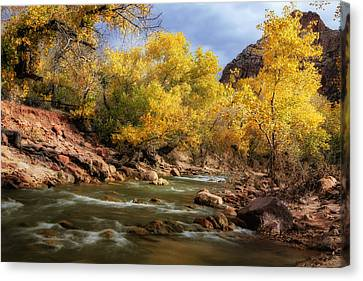 Zion River At Autumn Canvas Print