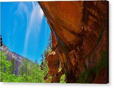 Canvas Print featuring the photograph Zion - Under The Falls by Dany Lison