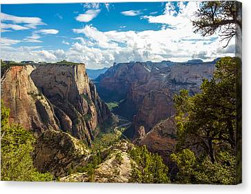 Zion National Park Canvas Print - Zion Valley by Cole Pattschull