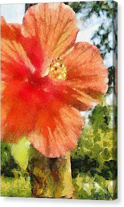 Zoo Flower Canvas Print by Jeffrey Kolker